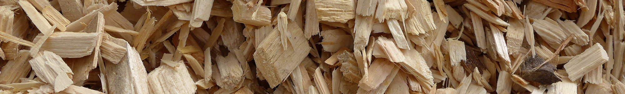 Biomass and Co-Products