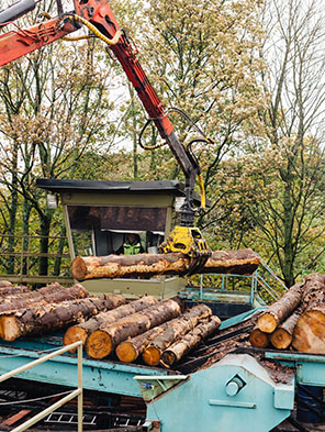 Processing Round Timber