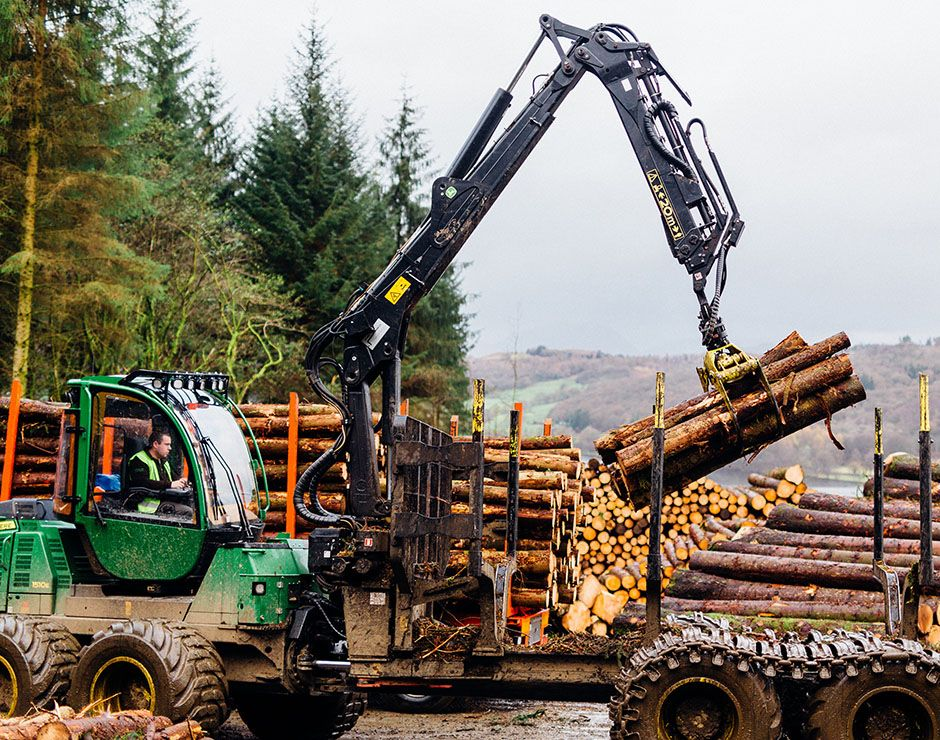 Gathering Felled Timber